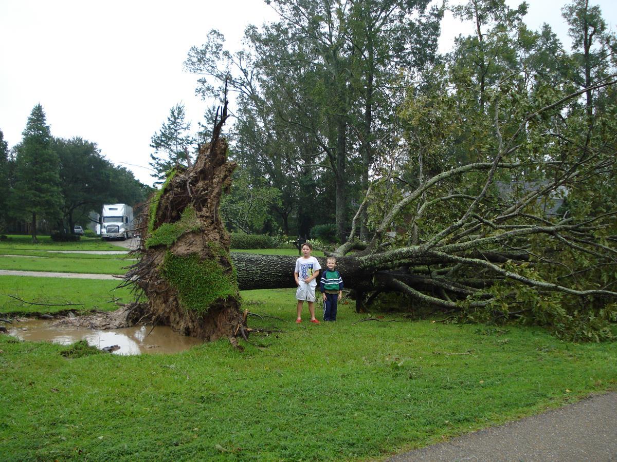 17. Hurricane Gustav